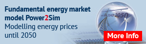 Fundamental energy market model Power2Sim